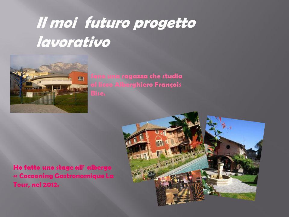 Il moi futuro progetto lavorativo Sono una ragazza che studia al liceo Alberghiero François Bise.