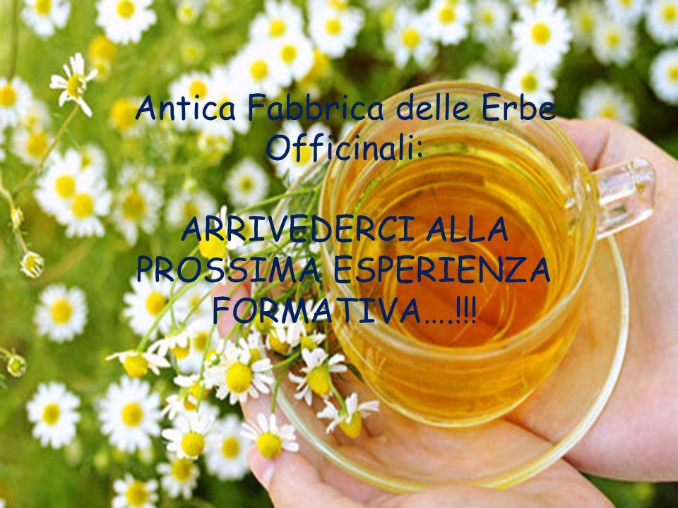 Antica Fabbrica delle Erbe Officinali: ARRIVEDERCI ALLA PROSSIMA ESPERIENZA FORMATIVA….!!!