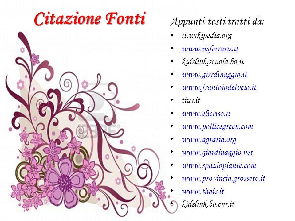 Citazione Fonti Appunti testi tratti da: i t.wikipedia.org w ww.iisferraris.it k idslink.scuola.bo.it w ww.gisrdinaggio.it w ww.frantoiodelveio.it t i