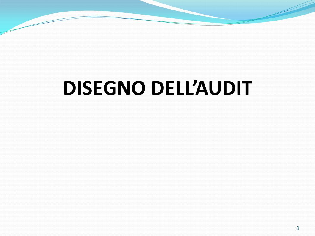 DISEGNO DELL'AUDIT 3