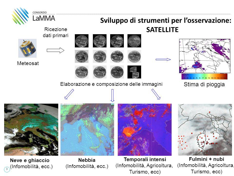 3 Ricezione dati primari Meteosat Elaborazione e composizione delle immagini Sviluppo di strumenti per l'osservazione: SATELLITE Temporali intensi (In
