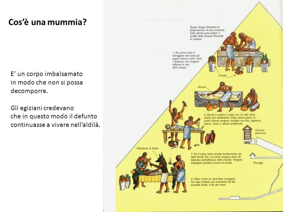 E' un corpo imbalsamato in modo che non si possa decomporre. Gli egiziani credevano che in questo modo il defunto continuasse a vivere nell'aldilà. Co