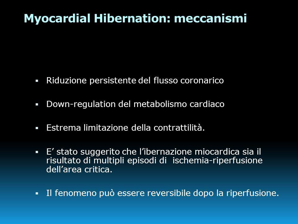 Myocardial Hibernation: meccanismi  Riduzione persistente del flusso coronarico  Down-regulation del metabolismo cardiaco  Estrema limitazione dell