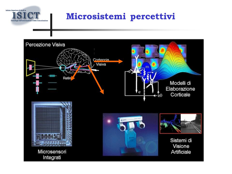 Microsistemi percettivi Dotare i sistemi di visione della capacità di evidenziare la struttura del segnale visivo.
