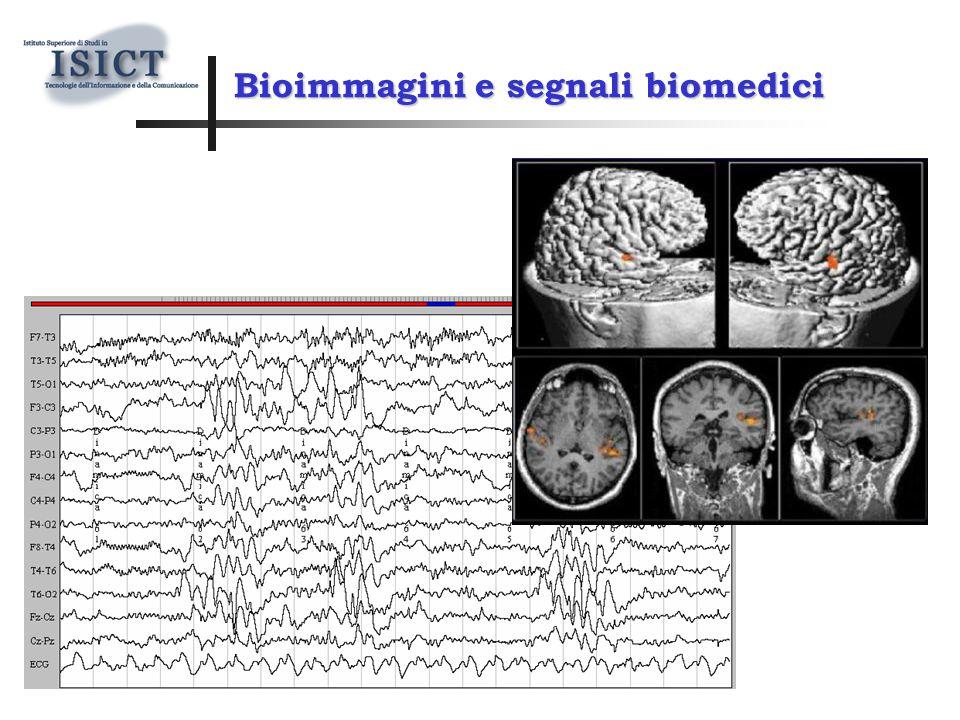 Bioimmagini e segnali biomedici