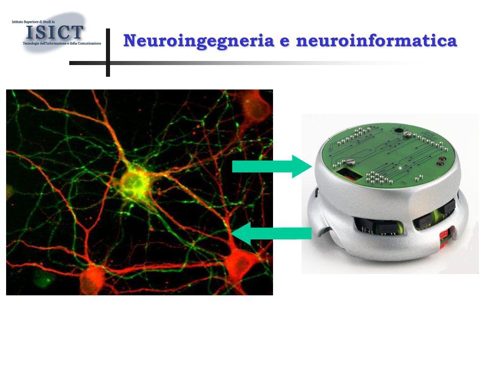 Neuroingegneria e neuroinformatica