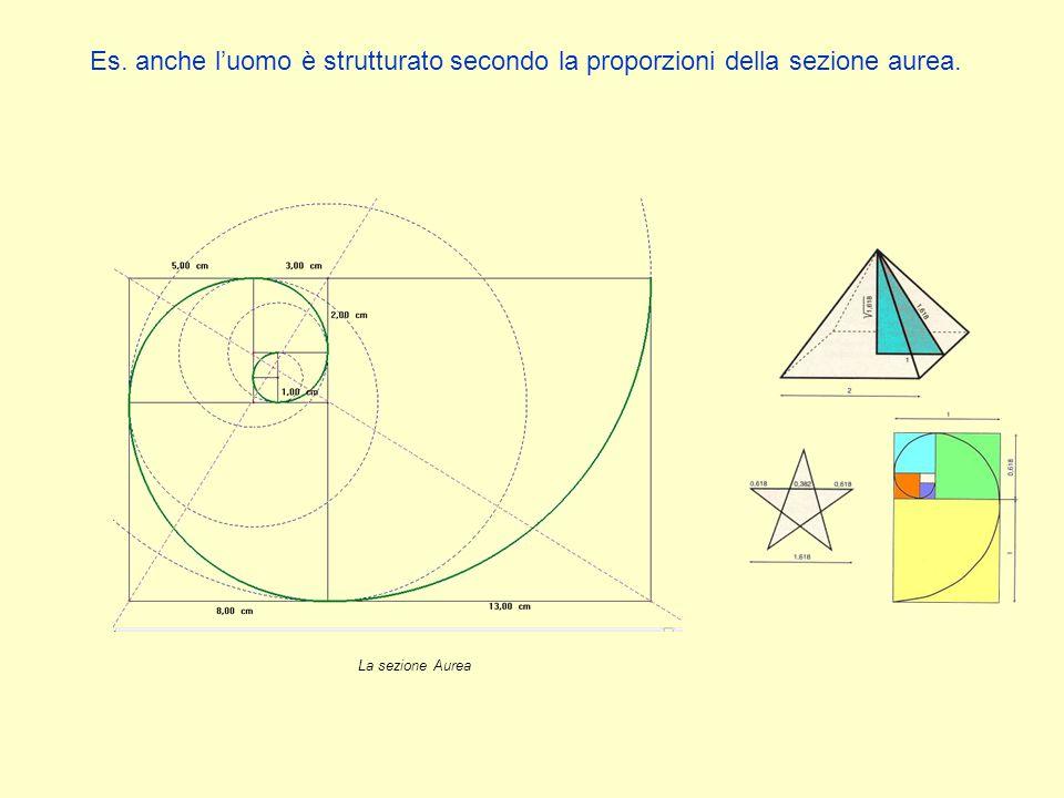 Es. anche l'uomo è strutturato secondo la proporzioni della sezione aurea. La sezione Aurea