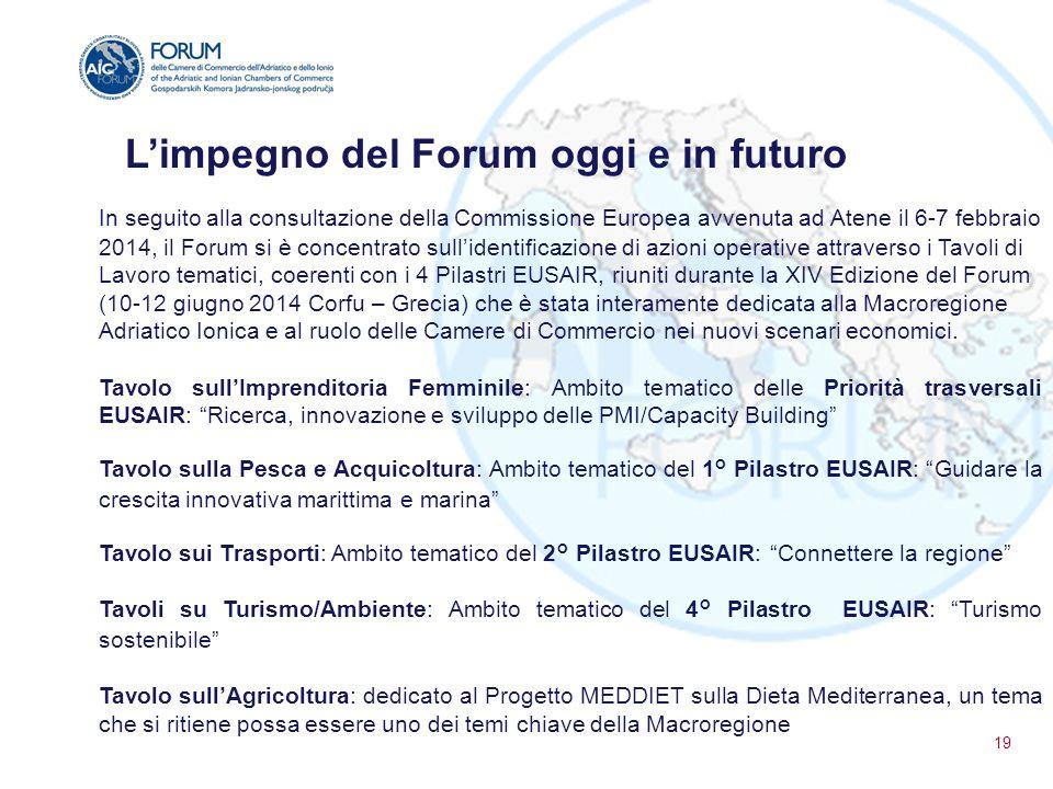 L'impegno del Forum oggi e in futuro In seguito alla consultazione della Commissione Europea avvenuta ad Atene il 6-7 febbraio 2014, il Forum si è con