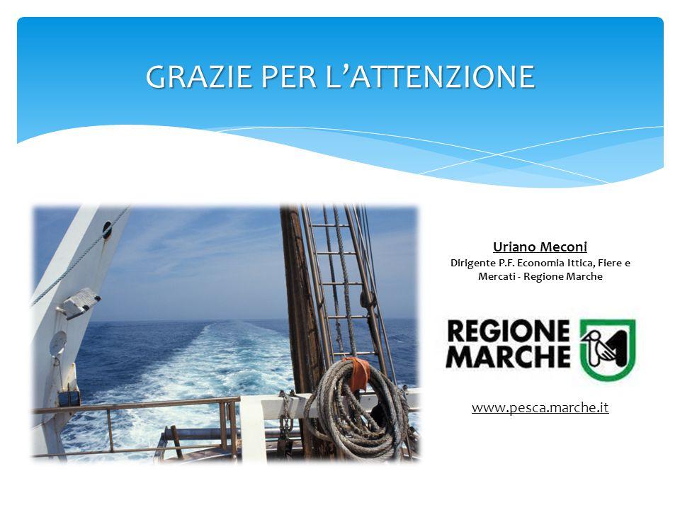 GRAZIE PER L'ATTENZIONE www.pesca.marche.it Uriano Meconi Dirigente P.F. Economia Ittica, Fiere e Mercati - Regione Marche