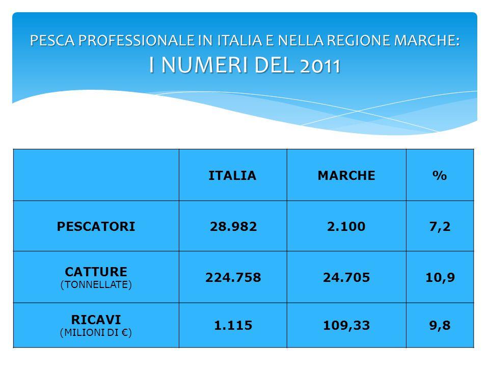 PESCA PROFESSIONALE IN ITALIA : 2000-2010 RICAVI (IN MILIONI DI €) DA 1.611 A 1.115 -38.3% LAVORATORI (NUMERO) DA 46.939 A 28.982 PESCHERECCI (NUMERO) DA 18.390 A 13.223 60% imbarcazioni con meno di 12 GRT che catturano il 40% del prodotto CATTURE (IN TONNELLATE) DA 439.284 A 224.758 -31% -28.1% -48.8%