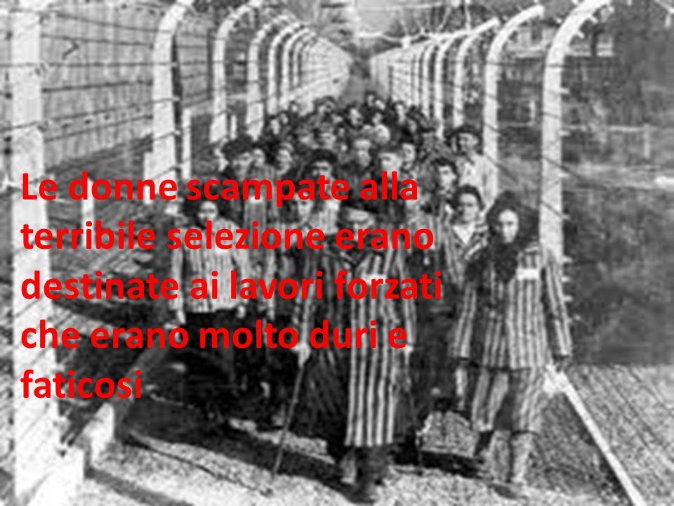 Le donne scampate alla terribile selezione erano destinate ai lavori forzati che erano molto duri e faticosi
