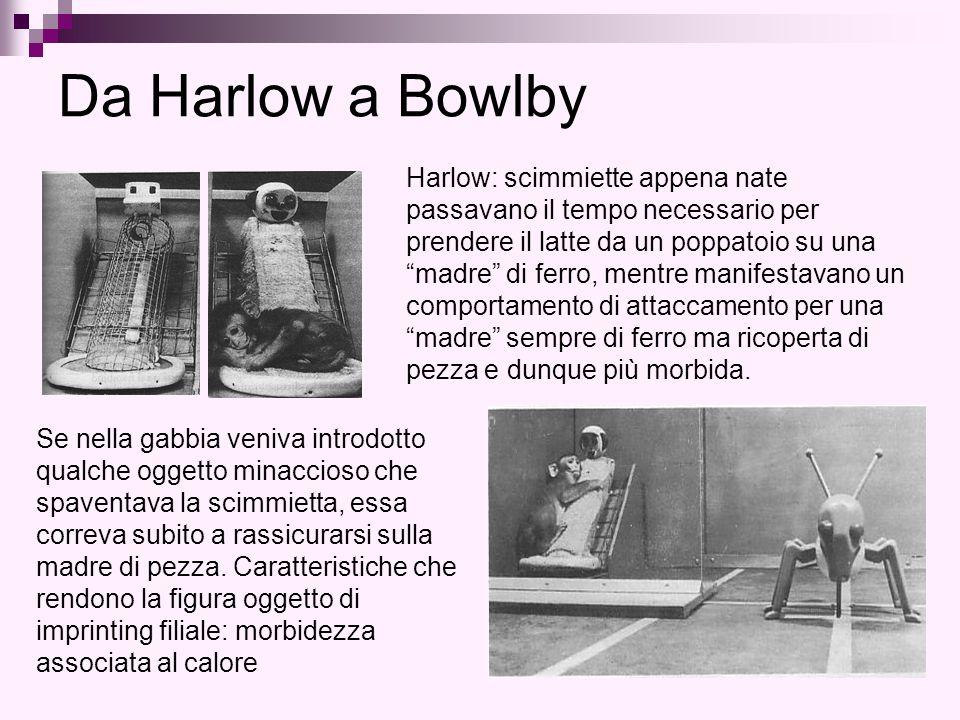 Da Harlow a Bowlby Harlow: scimmiette appena nate passavano il tempo necessario per prendere il latte da un poppatoio su una madre di ferro, mentre manifestavano un comportamento di attaccamento per una madre sempre di ferro ma ricoperta di pezza e dunque più morbida.