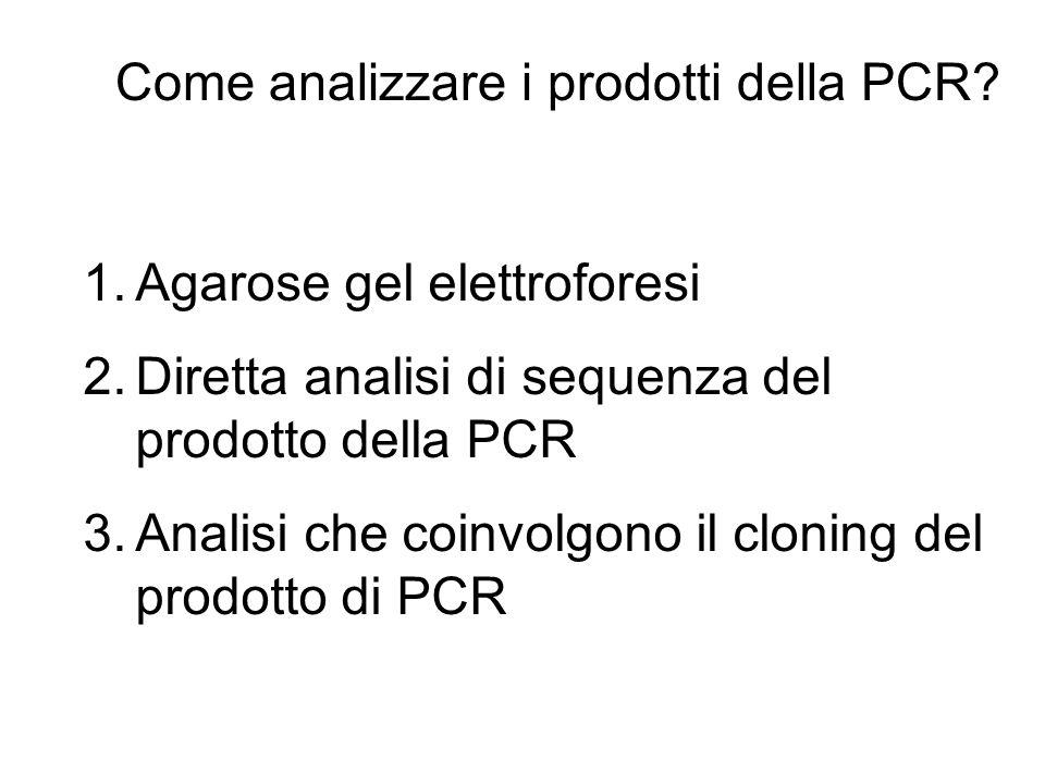 Come analizzare i prodotti della PCR? 1.Agarose gel elettroforesi 2.Diretta analisi di sequenza del prodotto della PCR 3.Analisi che coinvolgono il cl