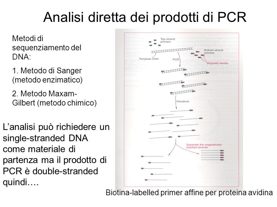 Analisi diretta dei prodotti di PCR L'analisi può richiedere un single-stranded DNA come materiale di partenza ma il prodotto di PCR è double-stranded