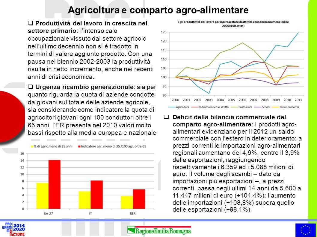 Agricoltura e comparto agro-alimentare  Produttività del lavoro in crescita nel settore primario: l'intenso calo occupazionale vissuto dal settore ag