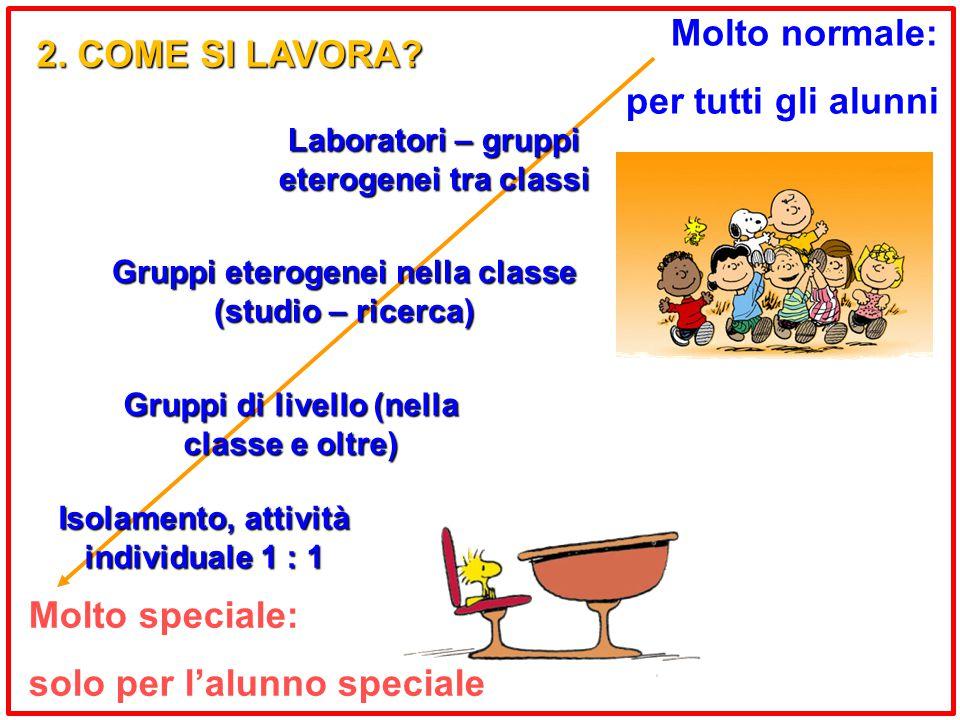 Molto speciale: solo per l'alunno speciale Molto normale: per tutti gli alunni Gruppi di livello (nella classe e oltre) Laboratori – gruppi eterogenei tra classi 2.