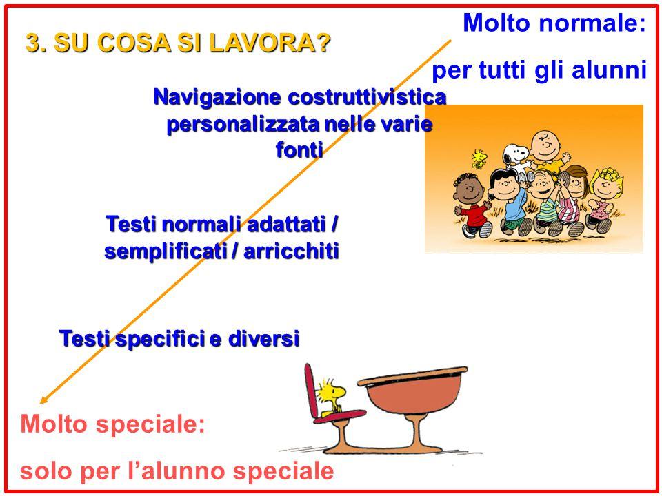 Molto speciale: solo per l'alunno speciale Molto normale: per tutti gli alunni Testi specifici e diversi Testi normali adattati / semplificati / arricchiti Navigazione costruttivistica personalizzata nelle varie fonti 3.