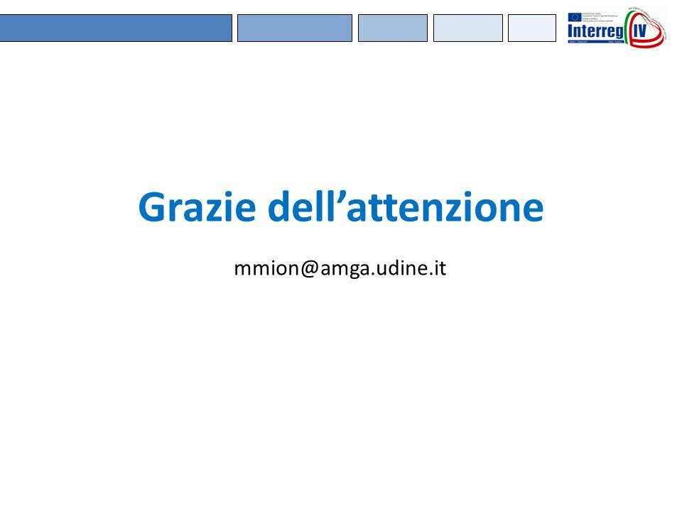 Grazie dell'attenzione mmion@amga.udine.it