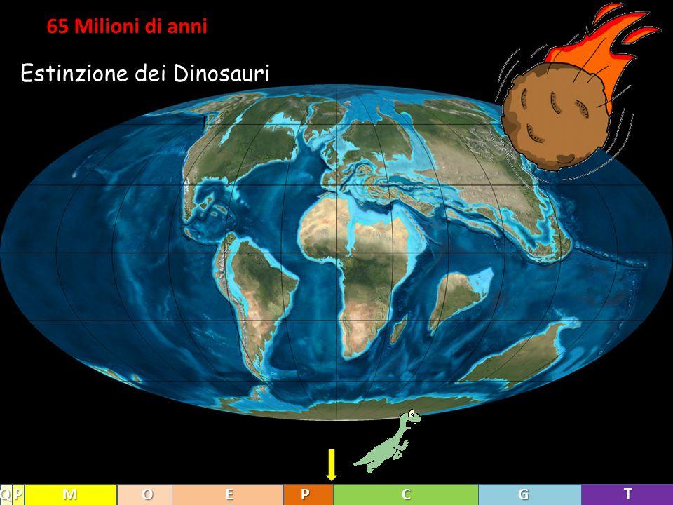 65 Milioni di anni T GCPEOMPQ Estinzione dei Dinosauri