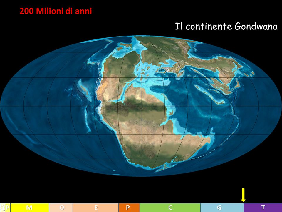 200 Milioni di anni Il continente Gondwana T GCPEOMPQ