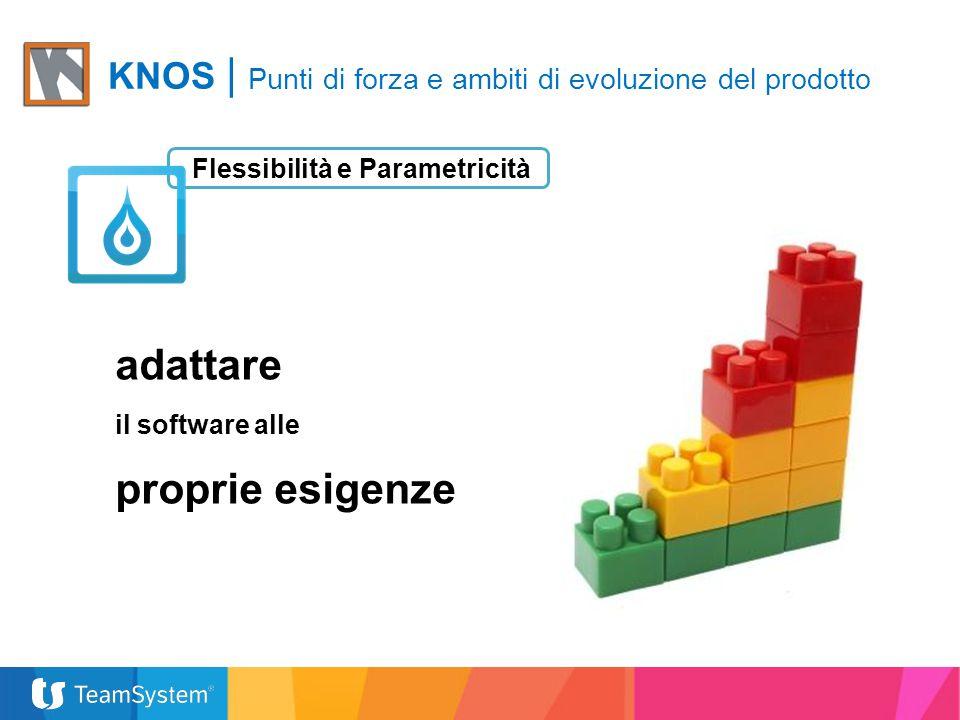 Flessibilità e Parametricità adattare il software alle proprie esigenze KNOS | Punti di forza e ambiti di evoluzione del prodotto