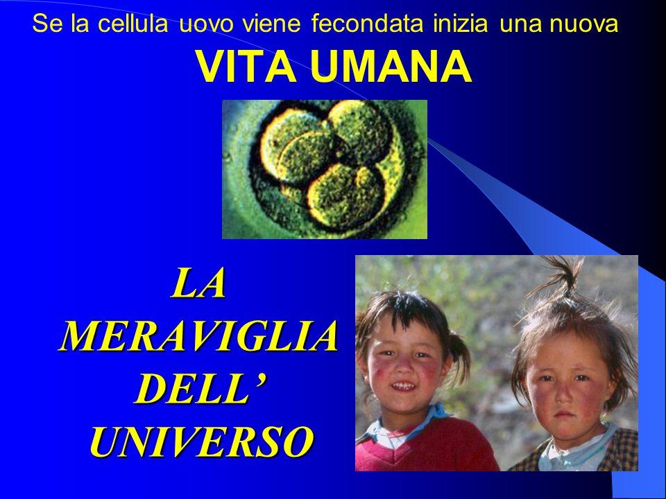 LA MERAVIGLIA DELL' UNIVERSO Se la cellula uovo viene fecondata inizia una nuova VITA UMANA