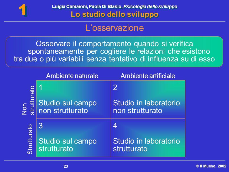 Luigia Camaioni, Paola Di Blasio, Psicologia dello sviluppo Lo studio dello sviluppo © Il Mulino, 2002 1 1 23 1 Studio sul campo non strutturato 2 Stu