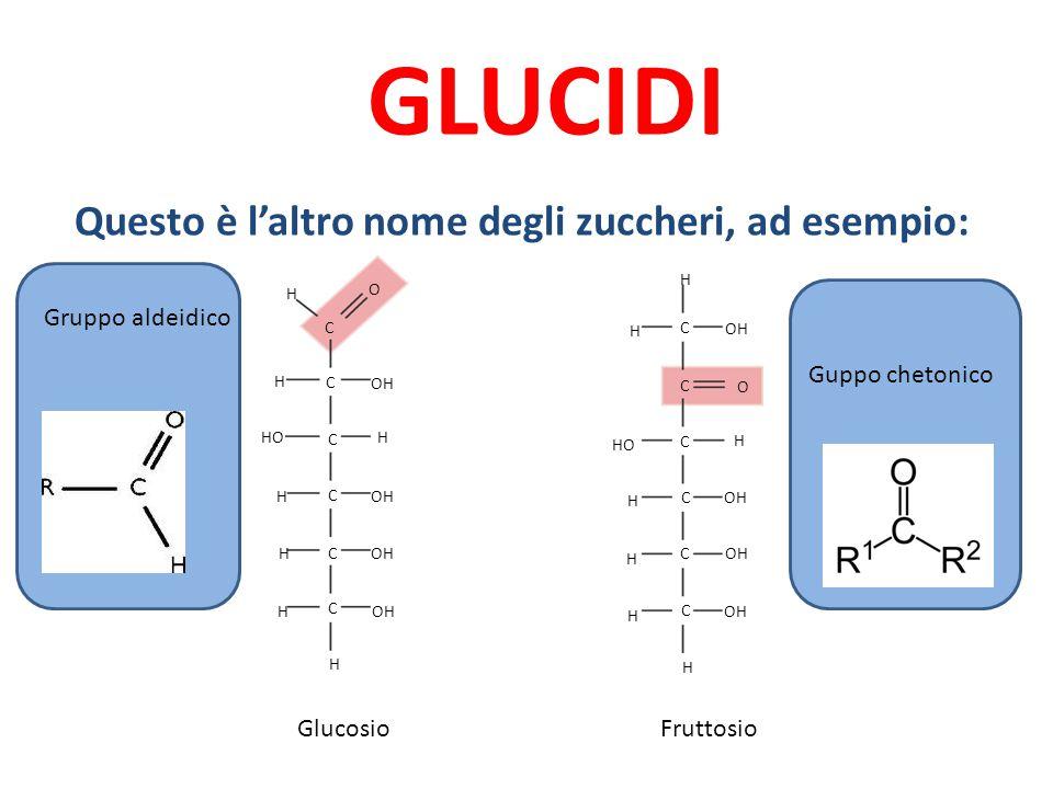 GLUCIDI Questo è l'altro nome degli zuccheri, ad esempio: C C C C C C C C C C H H H H H H H H H H H HO H H H C O OH C O GlucosioFruttosio Gruppo aldei