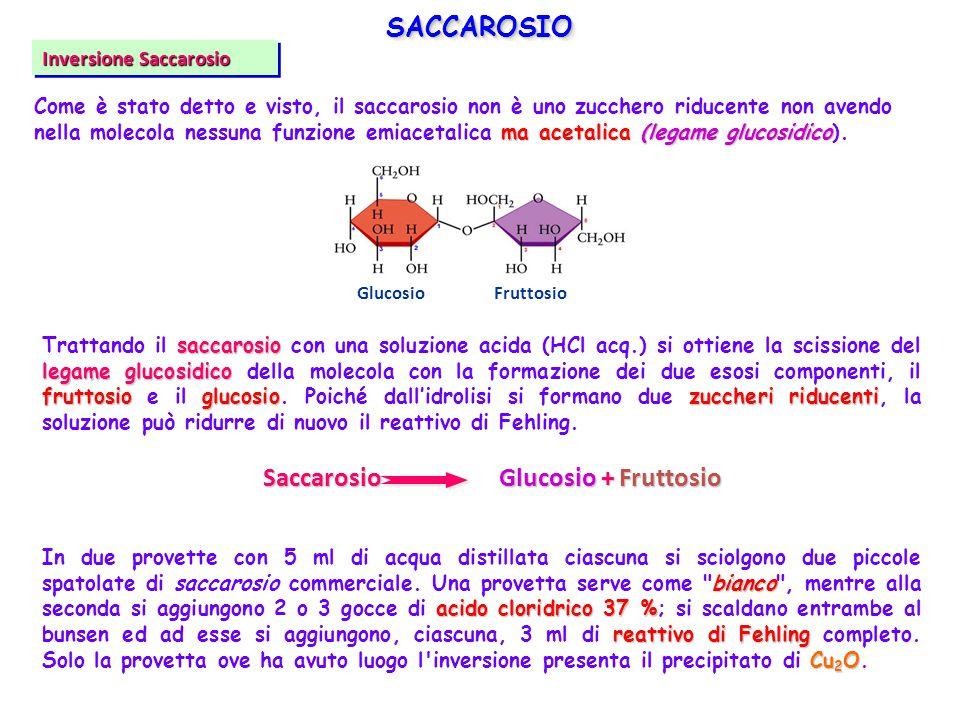SACCAROSIOSACCAROSIO saccarosio legame glucosidico fruttosio glucosiozuccheri riducenti Trattando il saccarosio con una soluzione acida (HCl acq.) si