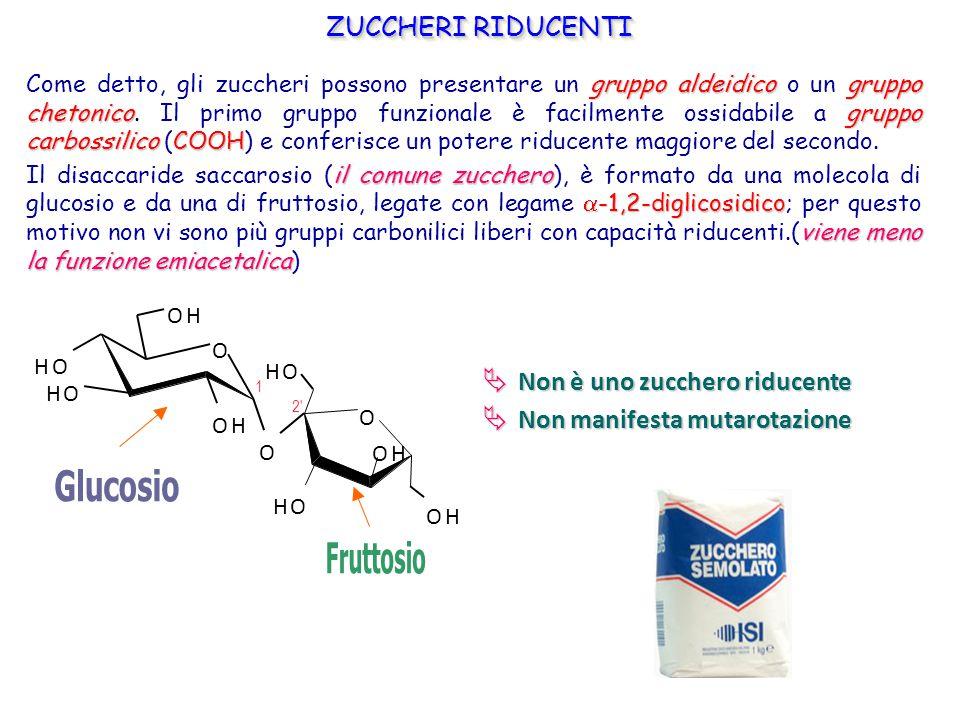 gruppo aldeidicogruppo chetonicogruppo carbossilicoCOOH Come detto, gli zuccheri possono presentare un gruppo aldeidico o un gruppo chetonico. Il prim