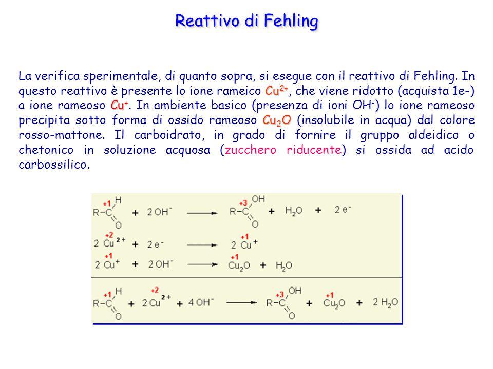 Cu 2+ Cu + Cu 2 O La verifica sperimentale, di quanto sopra, si esegue con il reattivo di Fehling. In questo reattivo è presente lo ione rameico Cu 2+