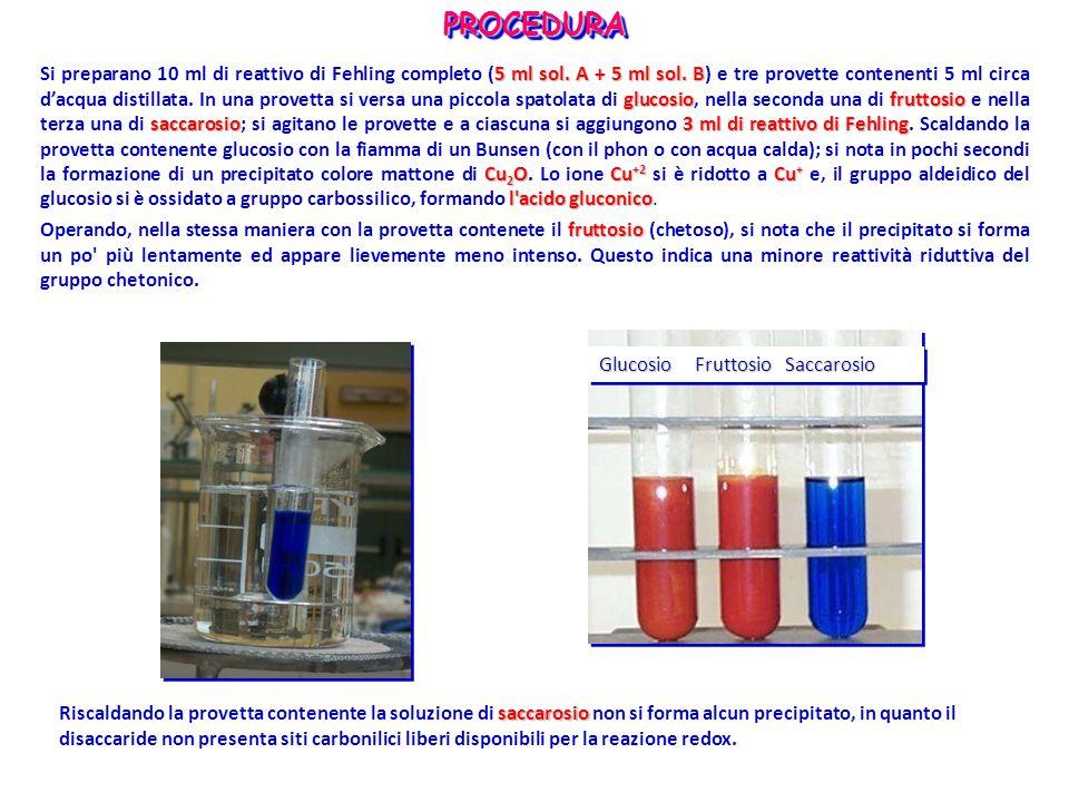 5 ml sol. A + 5 ml sol.B glucosiofruttosio saccarosio3 ml di reattivo di Fehling Cu 2 OCu +2 Cu + l'acido gluconico Si preparano 10 ml di reattivo di