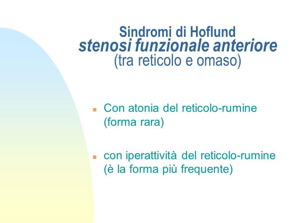"""Patogenesi delle sindromi di Hoflund - effetti - n mancanza della pompa omasale n ristagno degli """"ingesta"""" nel reticolo / rumine n raffinamento del co"""