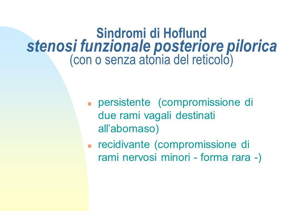 Sindromi di Hoflund stenosi funzionale anteriore (tra reticolo e omaso) n Con atonia del reticolo-rumine (forma rara) n con iperattività del reticolo-