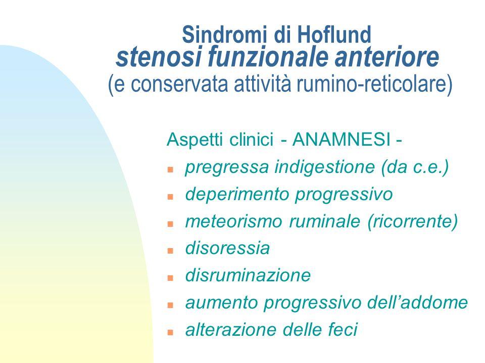 Sindromi di Hoflund stenosi funzionale posteriore pilorica (con o senza atonia del reticolo) n persistente (compromissione di due rami vagali destinat