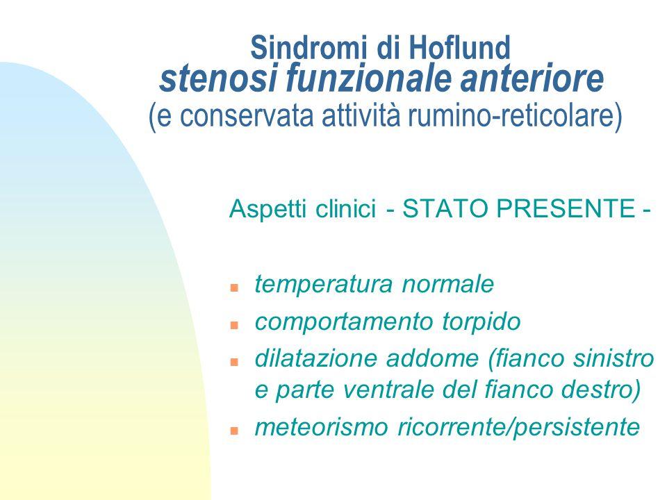 Sindromi di Hoflund stenosi funzionale anteriore (e conservata attività rumino-reticolare) Aspetti clinici - ANAMNESI - n pregressa indigestione (da c