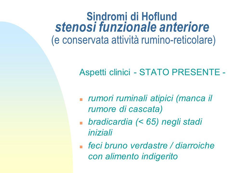 Sindromi di Hoflund stenosi funzionale anteriore (e conservata attività rumino-reticolare) Aspetti clinici - STATO PRESENTE - n temperatura normale n
