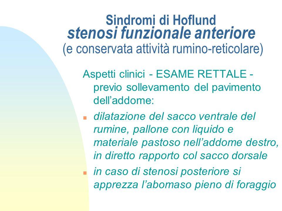 Sindromi di Hoflund stenosi funzionale anteriore (e conservata attività rumino-reticolare) Aspetti clinici - STATO PRESENTE - n rumori ruminali atipic