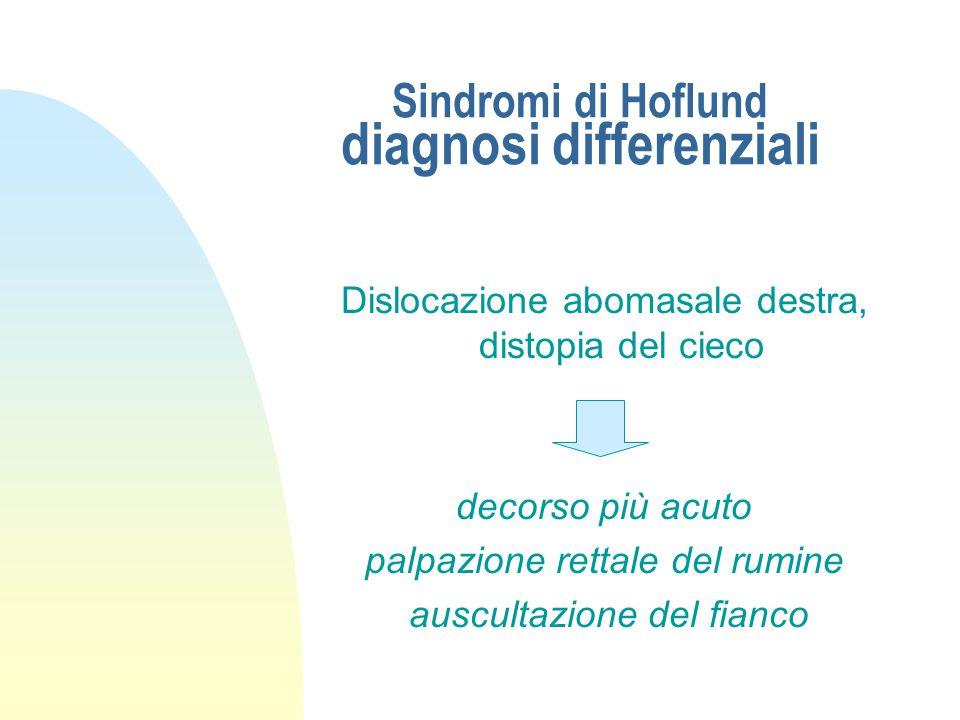 Sindromi di Hoflund diagnosi differenziali Stenosi (cardiali, reticolo omasali, anatomo…piloriche) laparoruminotomia esplorativa
