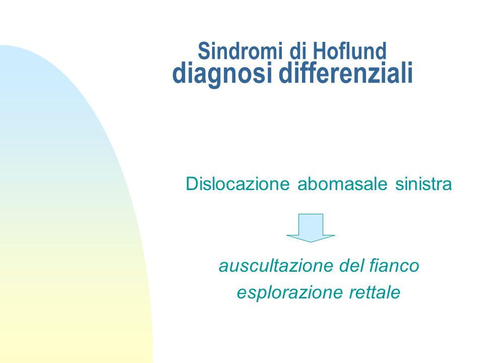 Sindromi di Hoflund diagnosi differenziali Dislocazione abomasale destra, distopia del cieco decorso più acuto palpazione rettale del rumine auscultaz