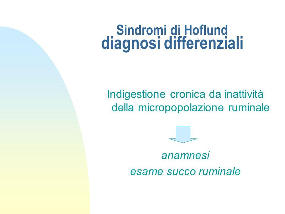 Sindromi di Hoflund diagnosi differenziali Dislocazione abomasale sinistra auscultazione del fianco esplorazione rettale