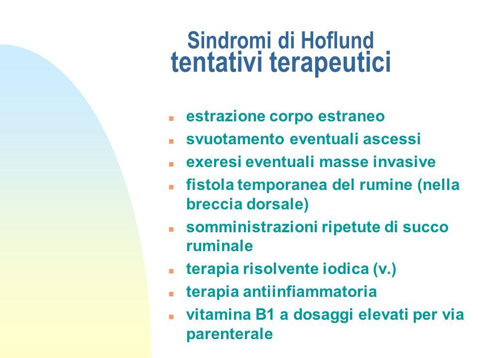 """Sindromi di Hoflund tentativi terapeutici n previo accertamento diagnostico laparoruminotomico n se il contenuto ruminale è """"strutturalmente"""" normale"""