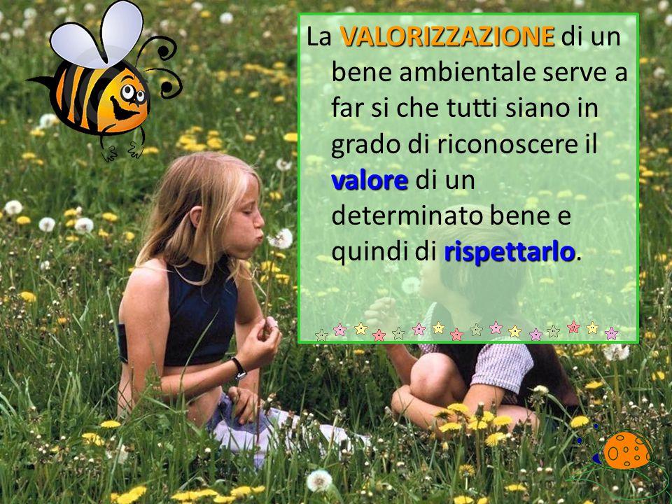 VALORIZZAZIONE valore rispettarlo La VALORIZZAZIONE di un bene ambientale serve a far si che tutti siano in grado di riconoscere il valore di un deter