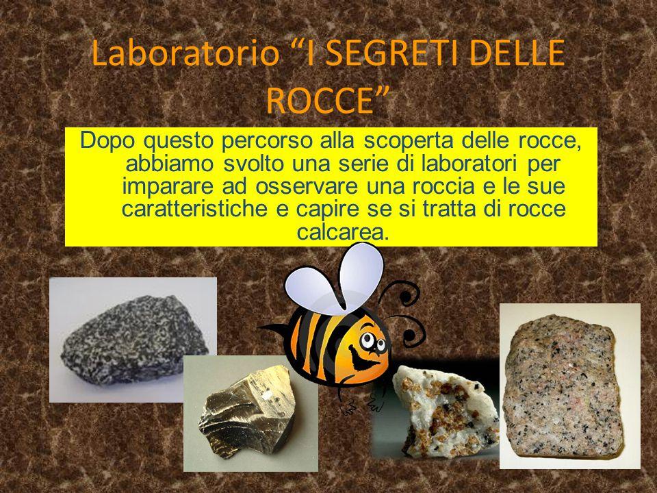 """Laboratorio """"I SEGRETI DELLE ROCCE"""" Dopo questo percorso alla scoperta delle rocce, abbiamo svolto una serie di laboratori per imparare ad osservare u"""