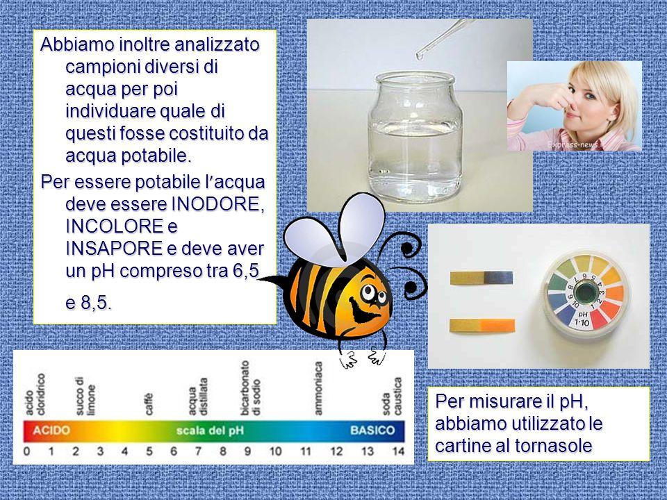 Abbiamo inoltre analizzato campioni diversi di acqua per poi individuare quale di questi fosse costituito da acqua potabile. Per essere potabile l ' a