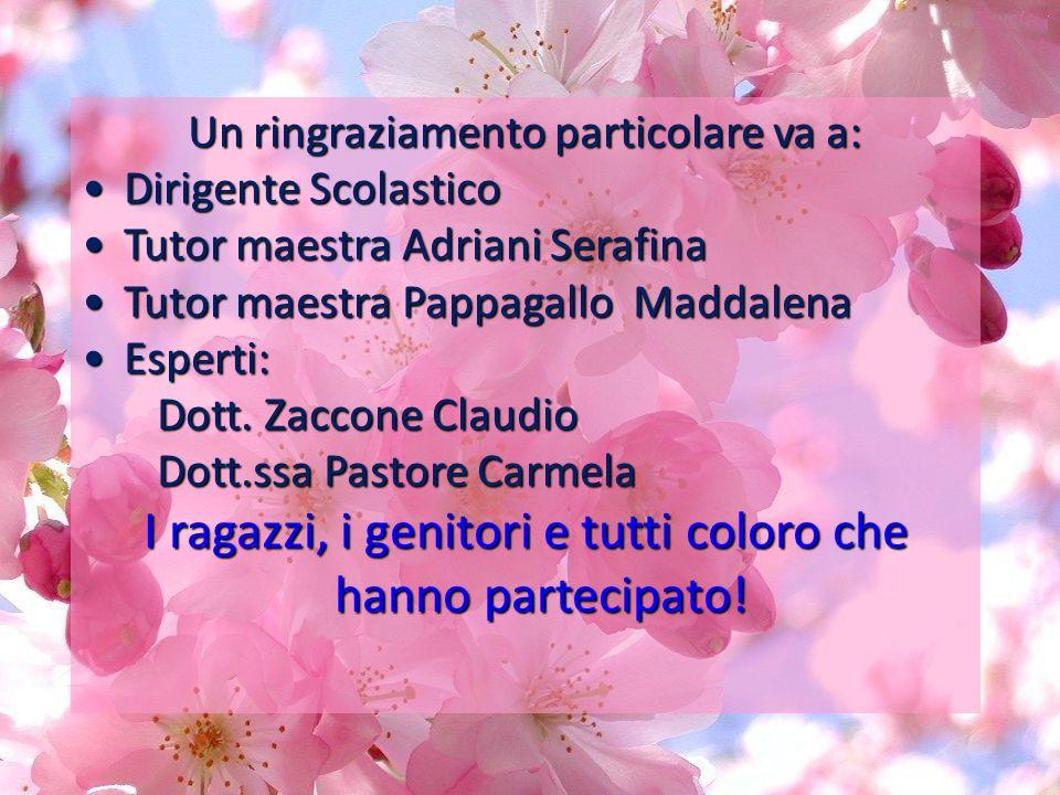 Un ringraziamento particolare va a: Dirigente Scolastico Dirigente Scolastico Tutor maestra Adriani Serafina Tutor maestra Adriani Serafina Tutor maes