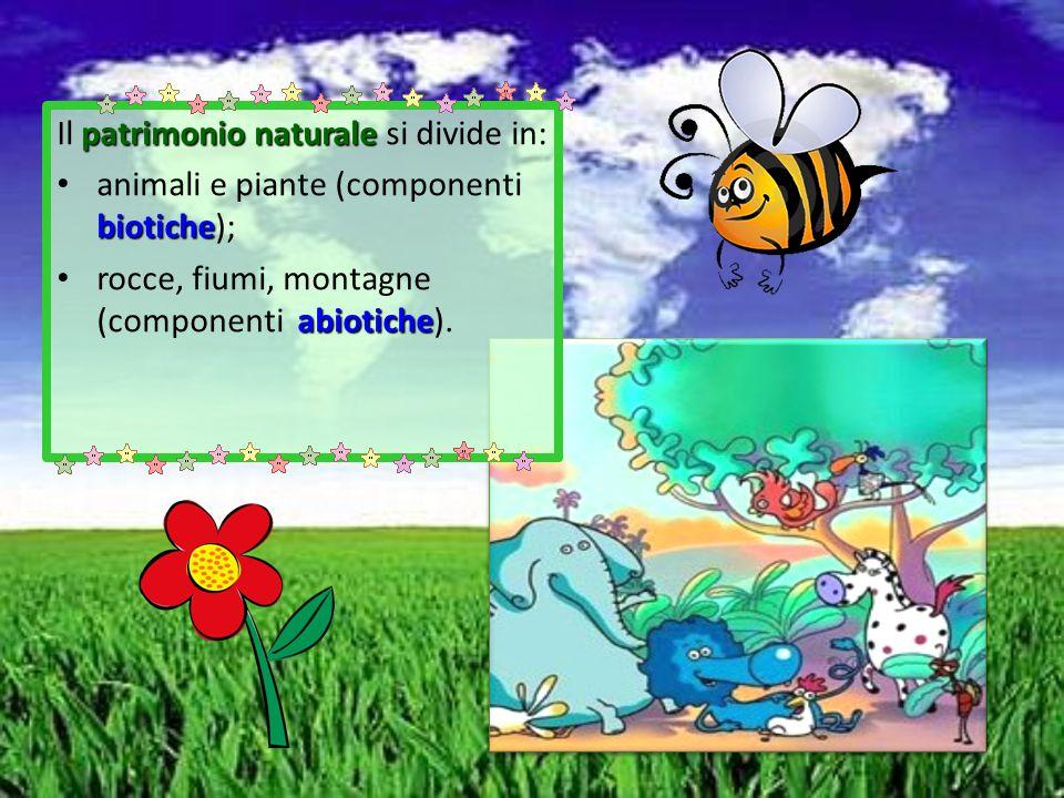 patrimonio naturale Il patrimonio naturale si divide in: biotiche animali e piante (componenti biotiche); abiotiche rocce, fiumi, montagne (componenti