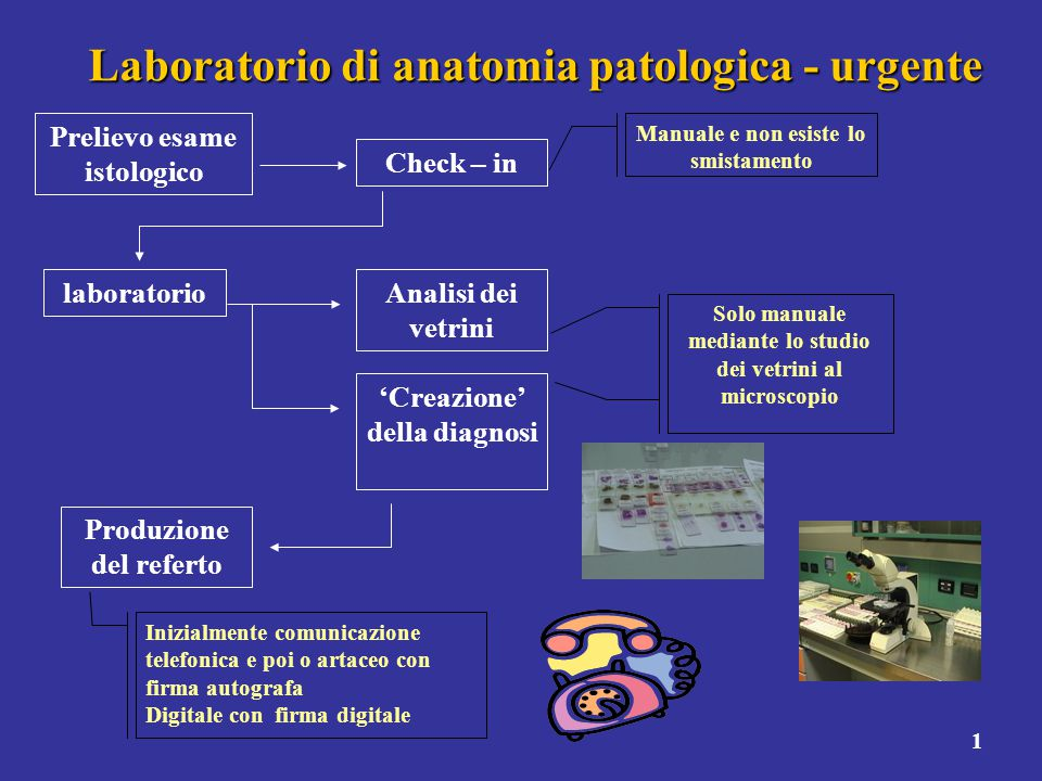 1 Laboratorio di anatomia patologica - urgente Prelievo esame istologico Check – in Manuale e non esiste lo smistamento laboratorio Analisi dei vetrin
