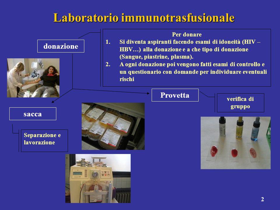 3 Laboratorio immunotrasfusionale Provetta sacca Si etichettano con l'indicazione del gruppo Stoccaggio dove arrivano anche le sacche acquistate da altri trasfusionali Dopo verifica di gruppo