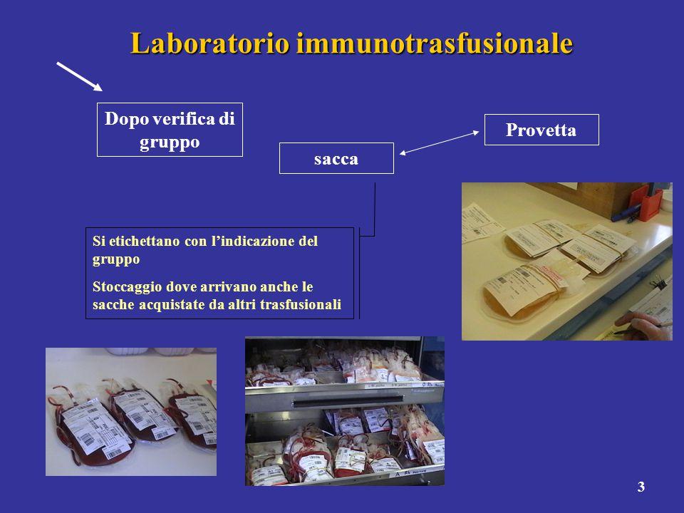 3 Laboratorio immunotrasfusionale Provetta sacca Si etichettano con l'indicazione del gruppo Stoccaggio dove arrivano anche le sacche acquistate da al